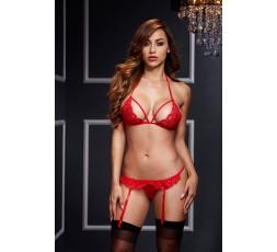 Sexy Shop Online I Trasgressivi - Sexy Lingerie - Lacy Bra Garter Open Crotch Panty 2P Red - Baci Lingerie