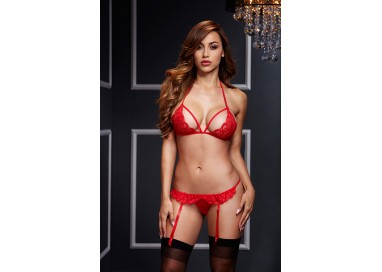 Sexy Lingerie - Lacy Bra Garter Open Crotch Panty 2P Red - Baci Lingerie