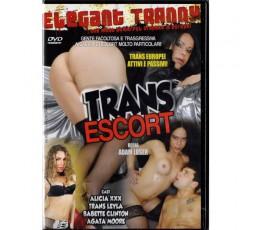 Dvd Trans Escort - Adam Loser