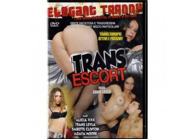 Dvd Trans - Escort - Adam Loser
