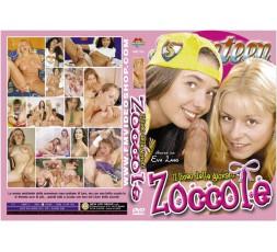 Sexy Shop Online I Trasgressivi - Dvd Etero - Il Liceo Delle Giovani Zoccole - Fm Video